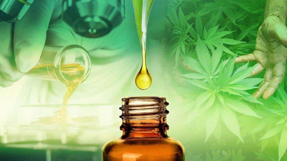 CBD and terpenes work better together > http://wintersupplement.com/hemp-oil-tincture-au/